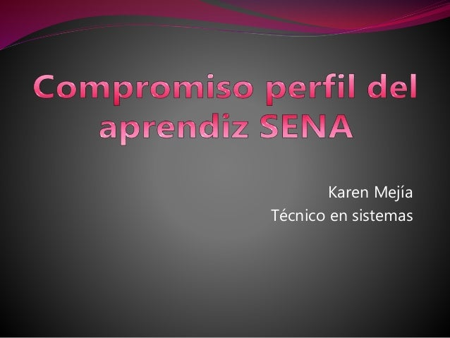 Karen Mejía Técnico en sistemas