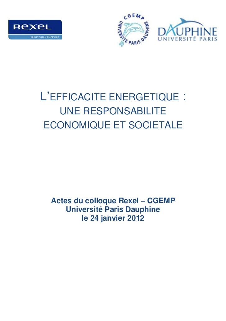 L'EFFICACITE ENERGETIQUE :  UNE RESPONSABILITEECONOMIQUE ET SOCIETALE Actes du colloque Rexel – CGEMP     Université Paris...
