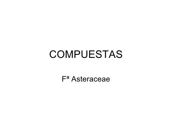 COMPUESTAS Fª Asteraceae