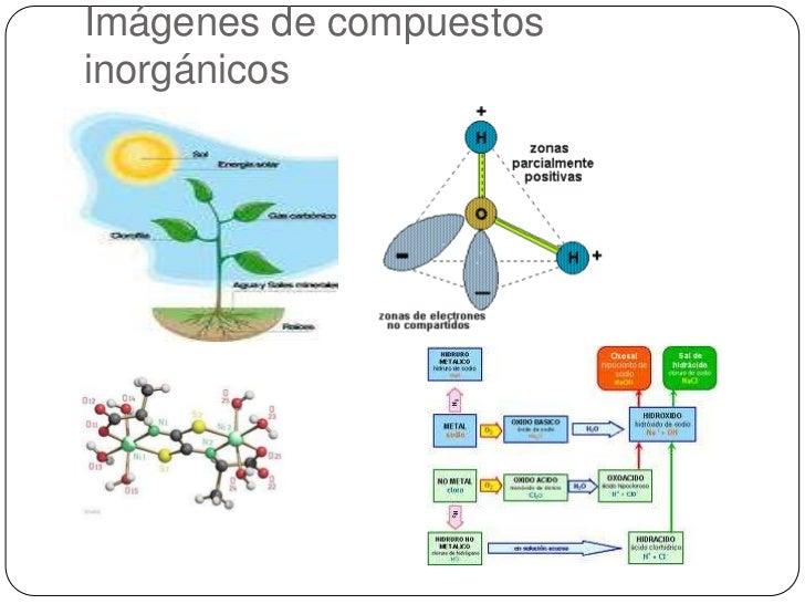 el carbono en los compuestos organicos: