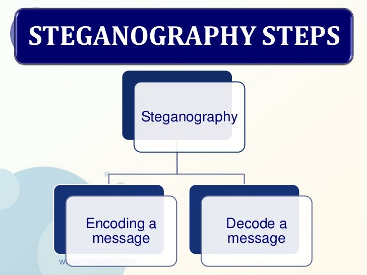 the types and techniques of steganography computer science essay Faculty of computer science and information technology, university tun hussein onn malaysia (uthm), batu pahat 86400,  there are several steganography techniques.