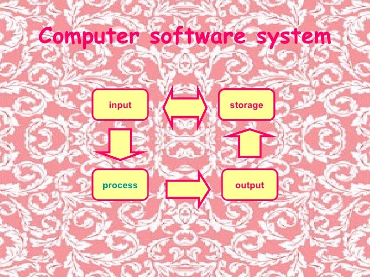 Computer software system input process storage output