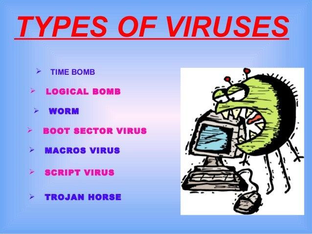 types of computer viruses essays