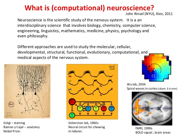What is (computational) neuroscience? Neuroscience is the scientific study of the nervous system.  It is a an interdiscipl...