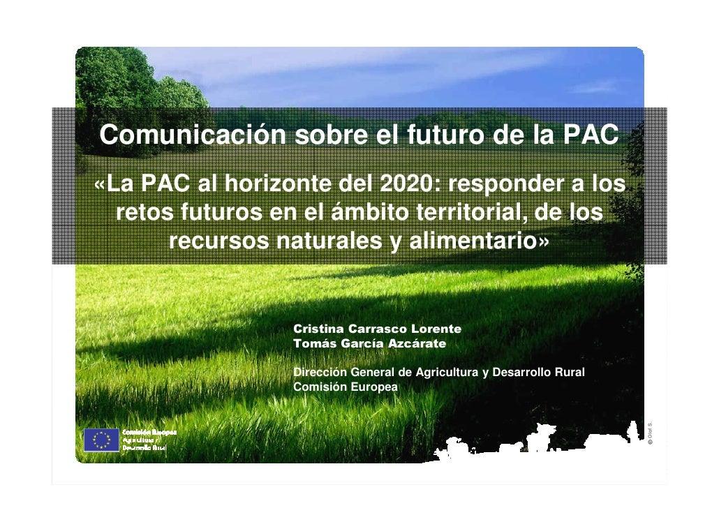 Comunicación sobre el futuro de la PAC«La PAC al horizonte del 2020: responder a los  retos futuros en el ámbito territori...