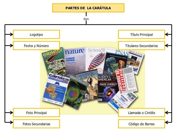 Mapa conceptual la revista for Cuales son las partes de un periodico mural