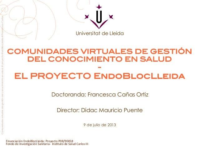 Comunidades virtuales de gestión del conocimiento en salud. El proyecto EndoBlocLleida