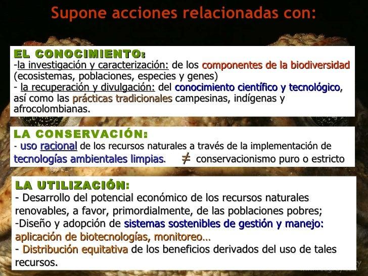 Supone acciones relacionadas con: <ul><li>EL CONOCIMIENTO :   </li></ul><ul><li>la investigación y caracterización:  de lo...