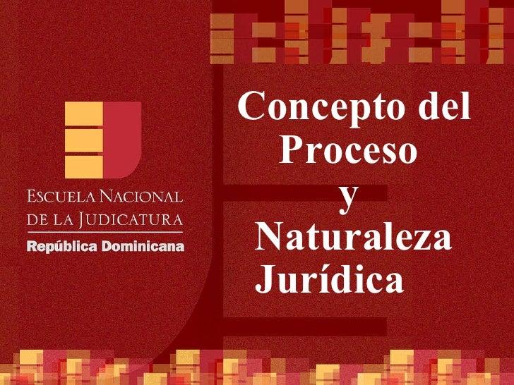 Concepto del Proceso  y  Naturaleza Jurídica
