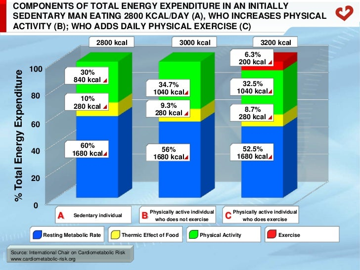 Calories are expended through physical activity