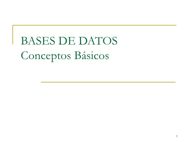 BASES DE DATOS Conceptos B á sicos