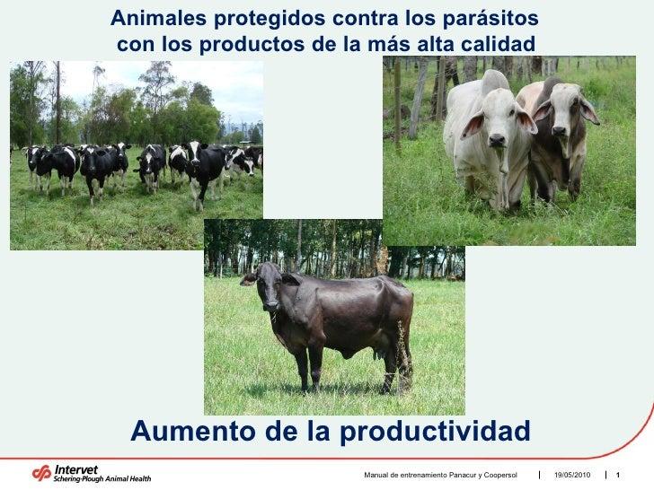 Manual de entrenamiento Panacur y Coopersol  Animales protegidos contra los parásitos con los productos de la más alta cal...