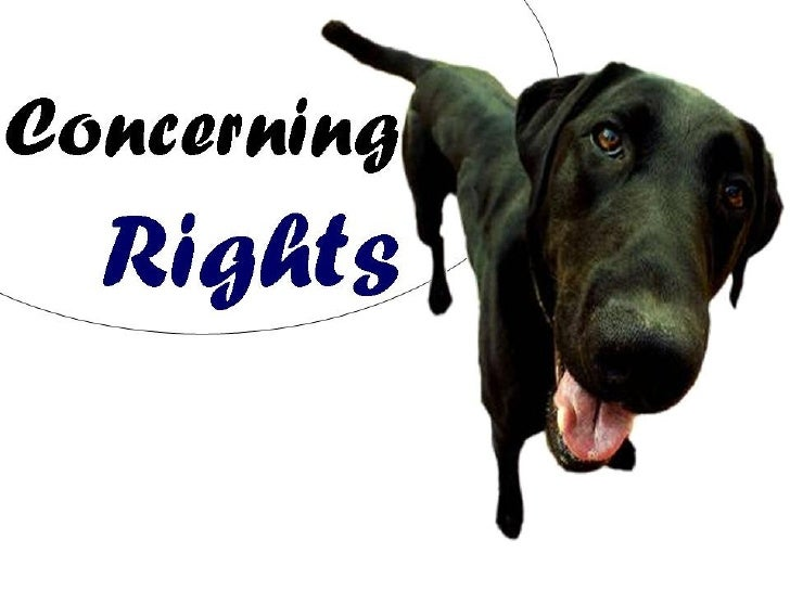 Concerning Animal Rights: Part One - Welfare