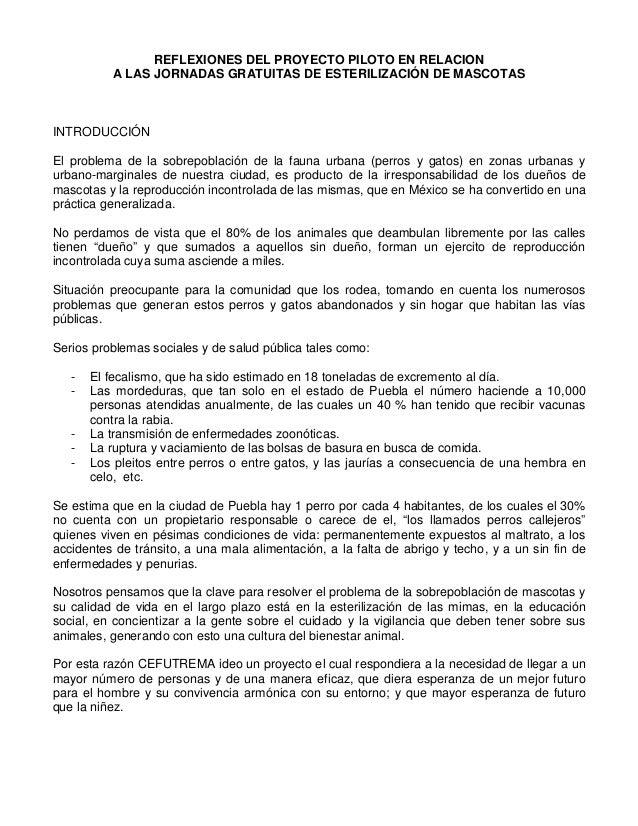 REFLEXIONES DEL PROYECTO PILOTO EN RELACION A LAS JORNADAS GRATUITAS DE ESTERILIZACIÓN DE MASCOTAS  INTRODUCCIÓN El proble...