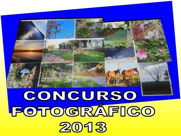 Concurso fotográfico 2013
