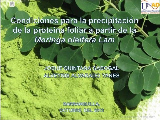 Condiciones para la precipitacion de la proteina foliar a partir de la moringa oleifera lam