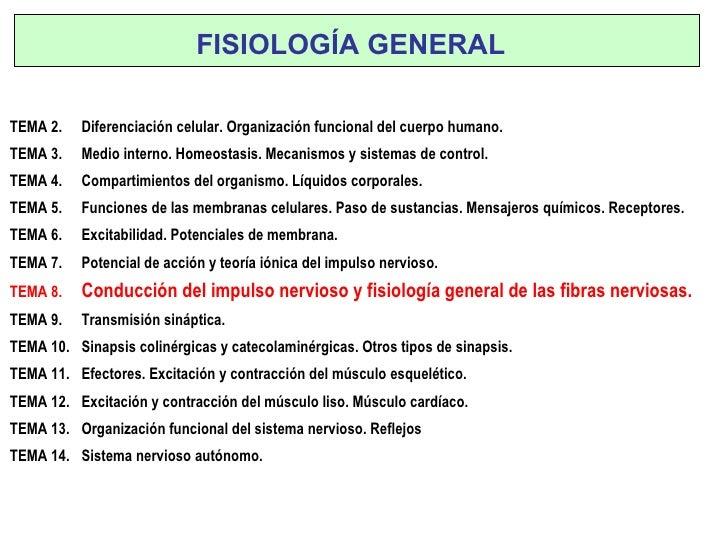Conducción del impulso nervioso y fisiología general de las fibras nerviosas