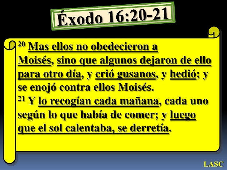 Resultado de imagen para exodo 16:20