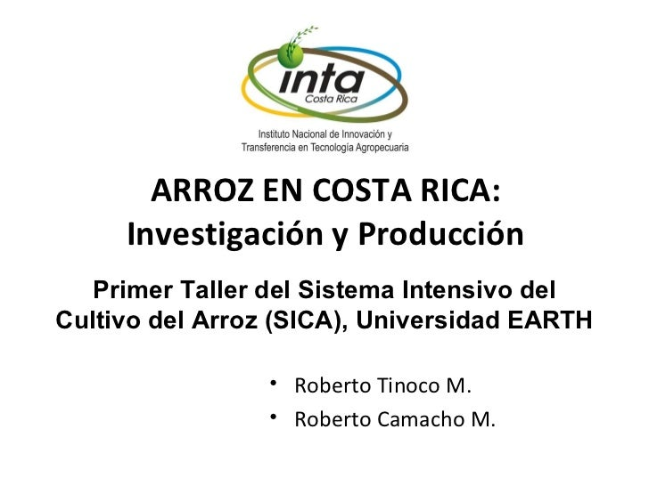 ARROZ EN COSTA RICA: Investigación y Producción <ul><li>Roberto Tinoco M. </li></ul><ul><li>Roberto Camacho M. </li></ul>P...