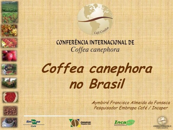 Conferencia conilon  11 06 12 apresentação pdf