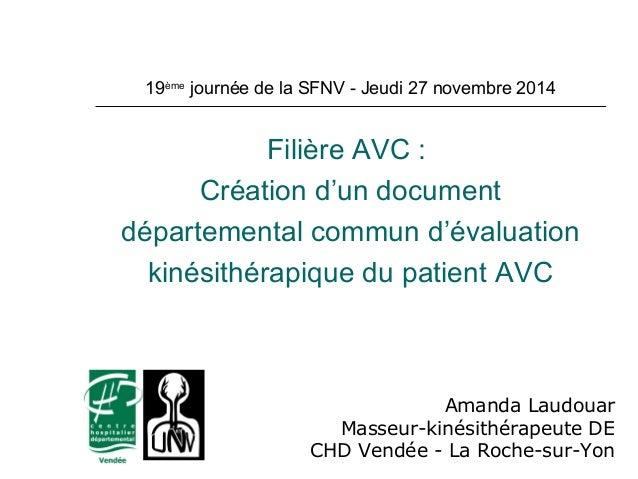 19ème journée de la SFNV - Jeudi 27 novembre 2014  Filière AVC :  Création d'un document  départemental commun d'évaluatio...