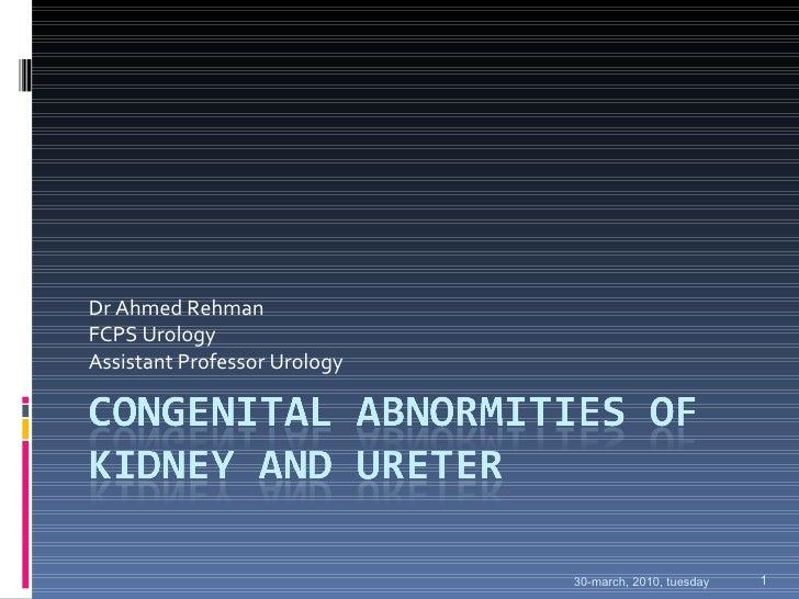 Dr Ahmed Rehman FCPS Urology Assistant Professor Urology 30-march, 2010, tuesday