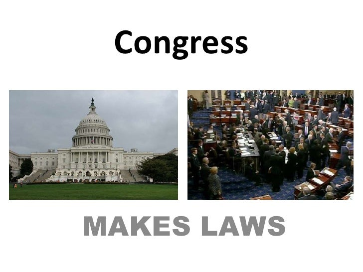 Congress<br />MAKES LAWS<br />
