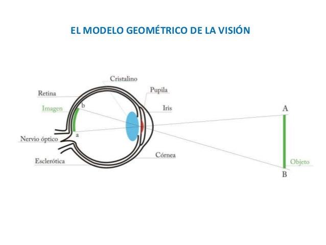 EL MODELO GEOMÉTRICO DE LA VISIÓN