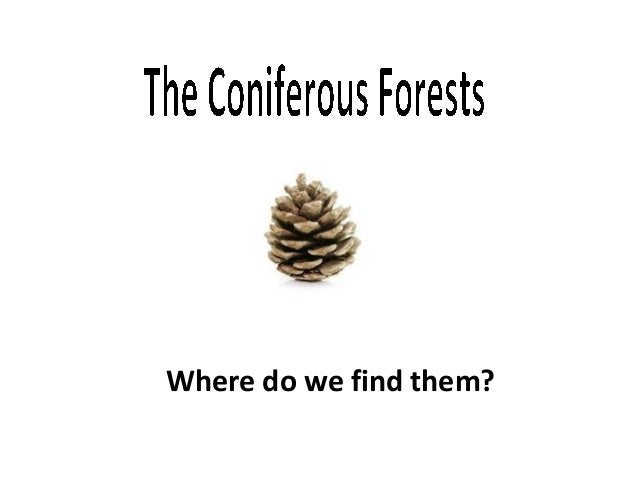 Where do we find them?