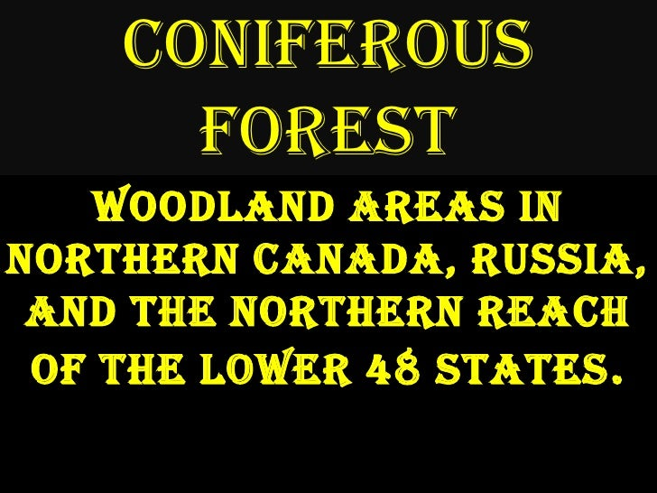 Coniferous Forest<br />Woodland areas in Northern Canada, Russia, and the northern reach of the lower 48 states.<br />