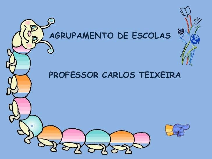 AGRUPAMENTO DE ESCOLAS <br />PROFESSOR CARLOS TEIXEIRA<br />