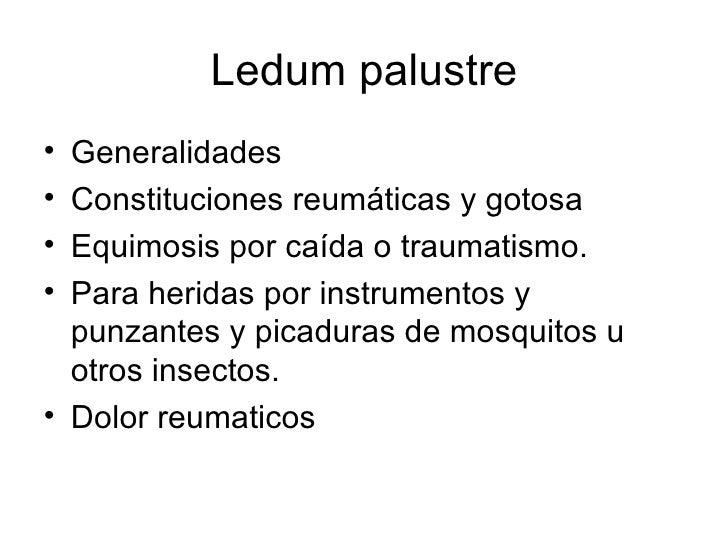 Ledum palustre <ul><li>Generalidades </li></ul><ul><li>Constituciones reumáticas y gotosa </li></ul><ul><li>Equimosis por ...