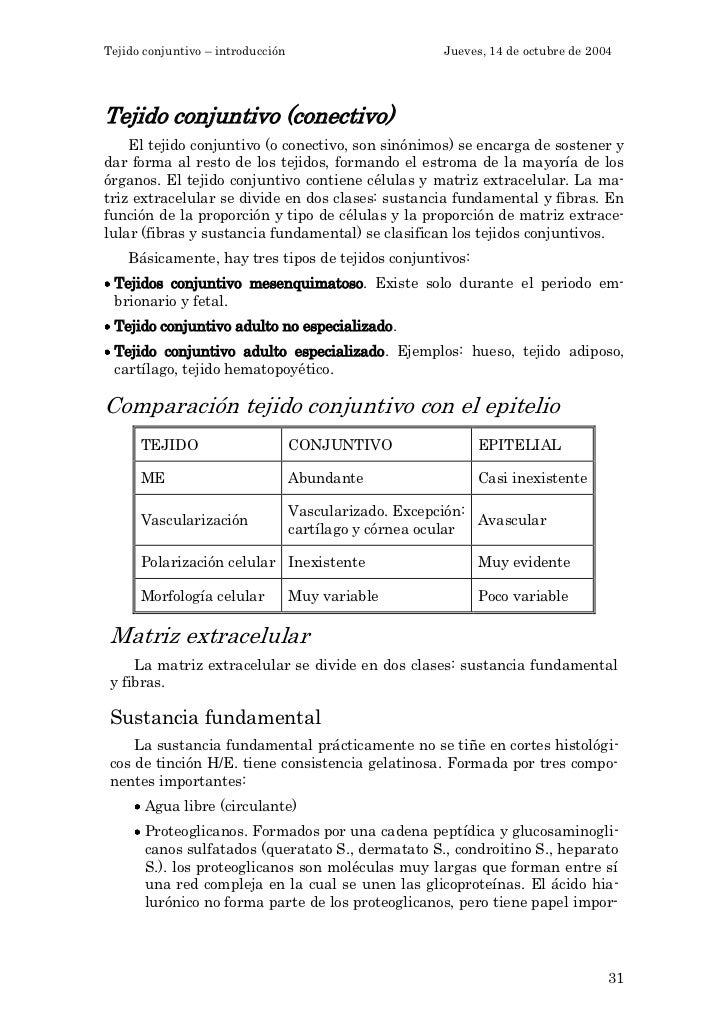 Tejido conjuntivo – introducción                        Jueves, 14 de octubre de 2004Tejido conjuntivo (conectivo)    El t...