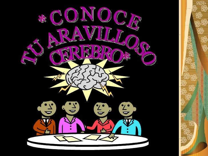 *CONOCE TU ARAVILLOSO CEREBRO*