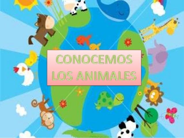 ANIMALES DOMÉSTICOS algunos viven en casa