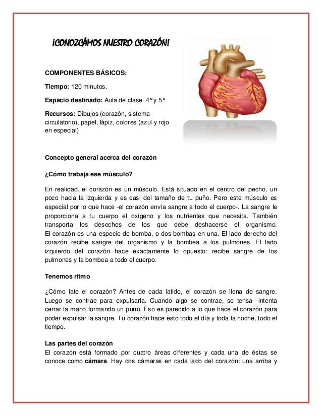 Conozcámos nuestro corazón taller orlando pdf