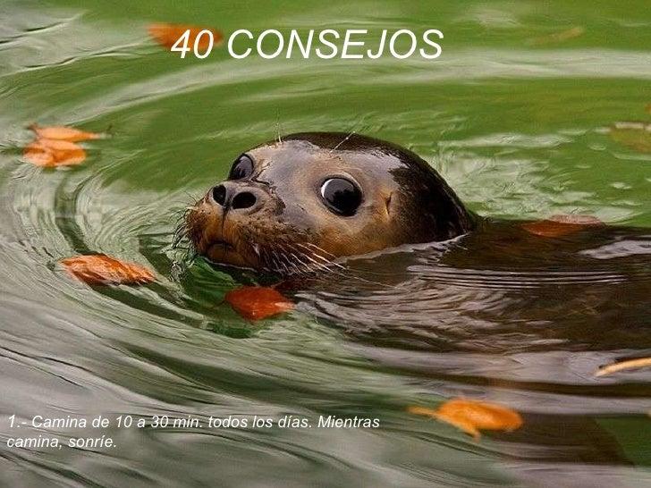 40 CONSEJOS   1 .- Camina de 10 a 30 min. todos los días. Mientras  camina, sonríe.