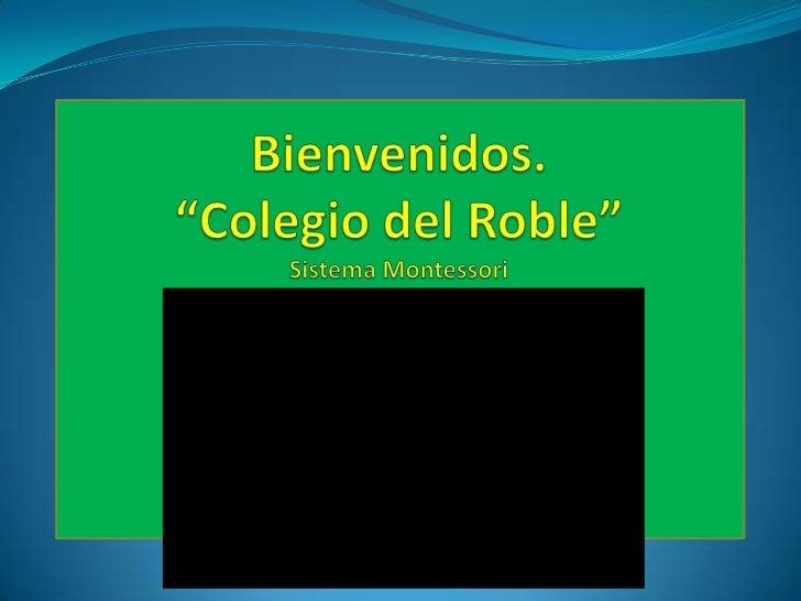 Consejo técnico zona 115  18 enero 2012