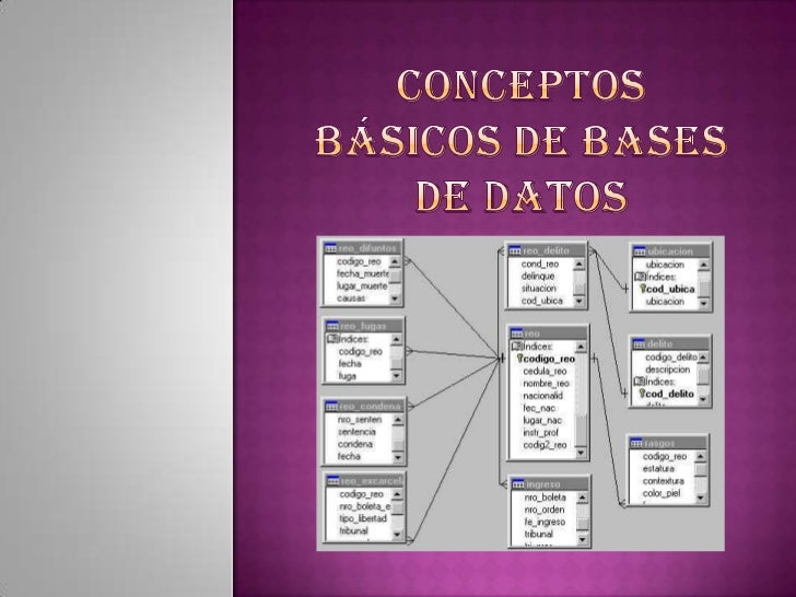 Conceptos básicos de bases de datos<br />