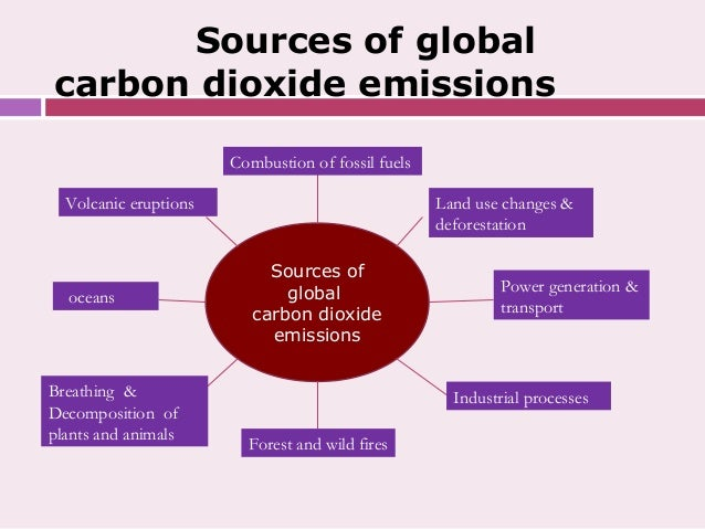 global warming 30 essay Social 30 1 essays on global warming posted in uncategorized by you know a book impacts your life when you start writing essays about the main character for.