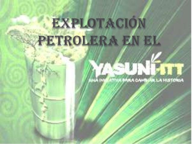 Conservación o petróleo en el yasuní ITT