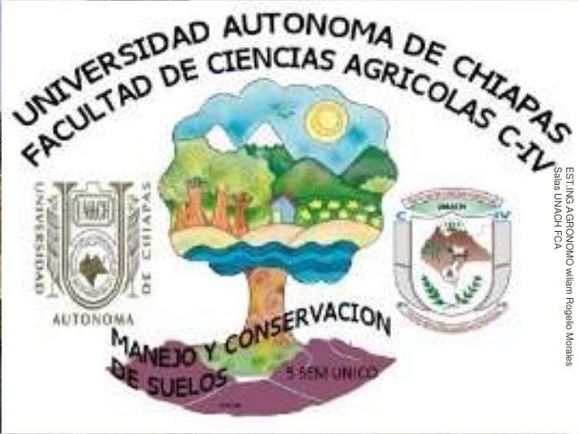 UNIVERSIDAD AUTONOMA DE CHIAPAS FACULTAD DE CIENCIAS AGRICOLAS C-IV EUTROFISACION (CAUSAS Y CONSECUENCIAS AMBIENTALES) POR...