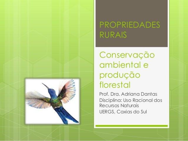 PROPRIEDADES RURAIS Conservação ambiental e produção florestal Prof. Dra. Adriana Dantas Disciplina: Uso Racional dos Recu...