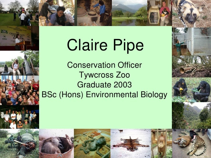 Claire Pipe       Conservation Officer          Tywcross Zoo         Graduate 2003 BSc (Hons) Environmental Biology       ...
