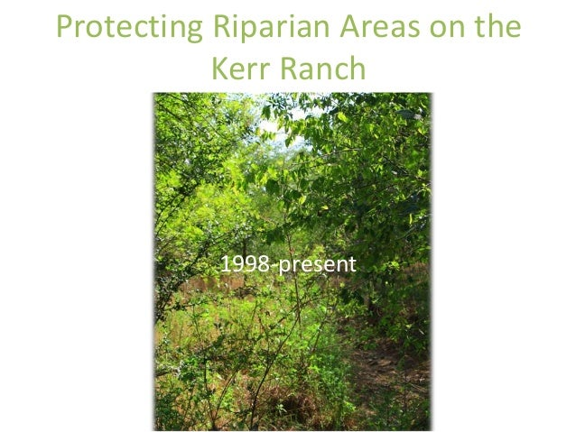 Protecting Riparian Areas on the  Kerr Ranch  1998-present