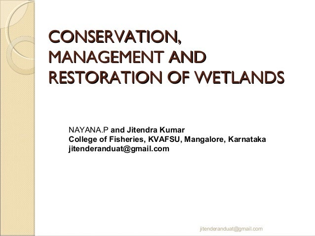 CONSERVATION, MANAGEMENT AND RESTORATION OF WETLANDS NAYANA.P and Jitendra Kumar College of Fisheries, KVAFSU, Mangalore, ...
