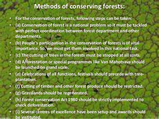 Essay on nature conservation