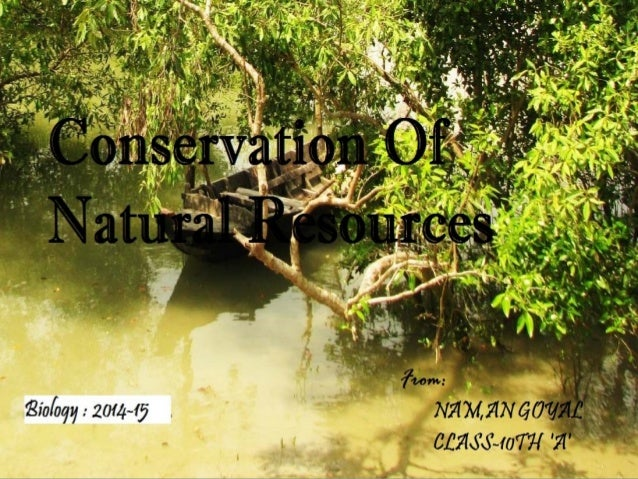 essay on conservation and consumption of resources Resource extraction and consumption  (ycelp), the university of new hampshire water systems analysis group, the wildlife conservation society, and the columbia.