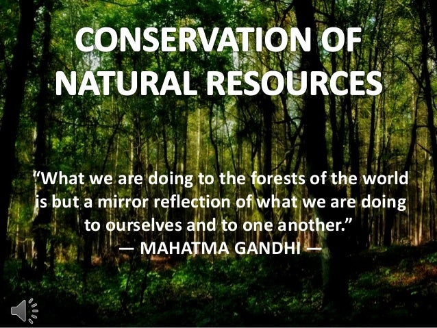 An essay on nature conservation
