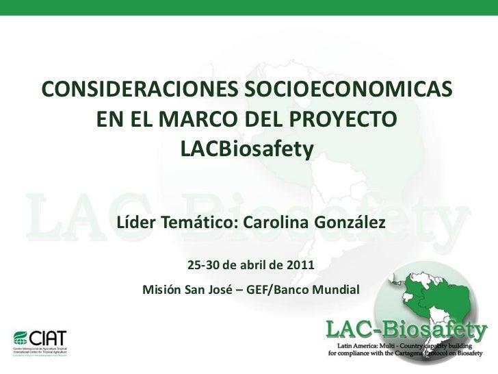 CONSIDERACIONES SOCIOECONOMICAS    EN EL MARCO DEL PROYECTO           LACBiosafety     Líder Temático: Carolina González  ...